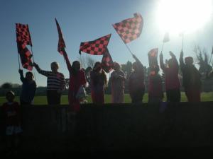 Ballyneale Supporters