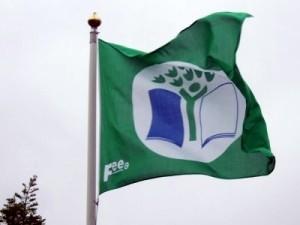 Green-Flag-700--400x300