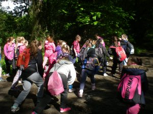 Nature Walk-Stretches