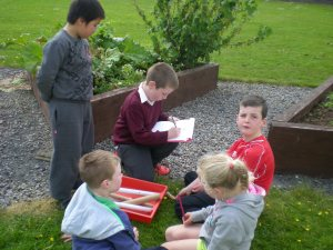 Maths Trail-1st and 2nd