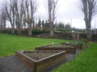 School Garden and feeders and boxes
