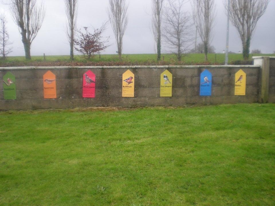 Bird Signs