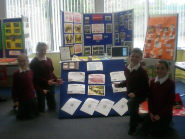School of Excellence Display
