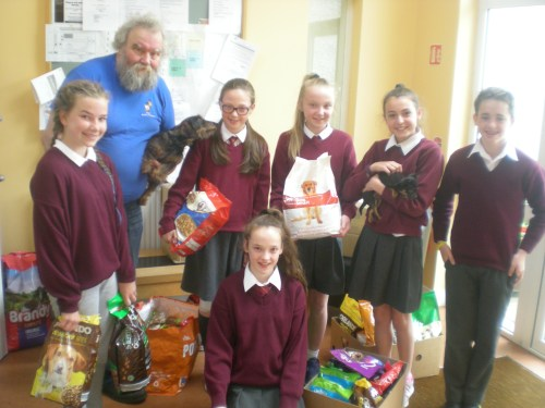 Deise Animal Sanctuary Donations